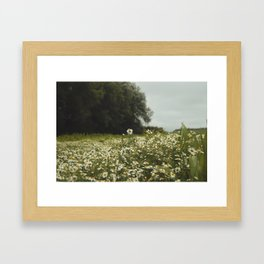 Give me your answer, do. Framed Art Print