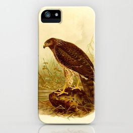 Reunion Harrier (Malagasy) iPhone Case