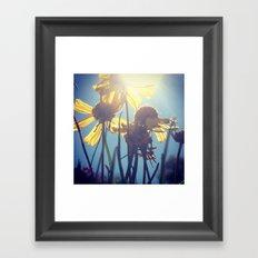 Flowers in Sunshine Framed Art Print