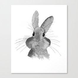 Cutie Lapie Canvas Print