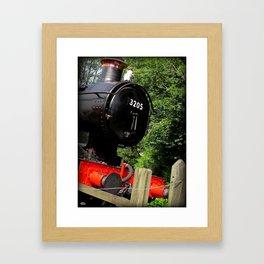 3205 Framed Art Print