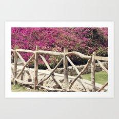 Spring fence Art Print