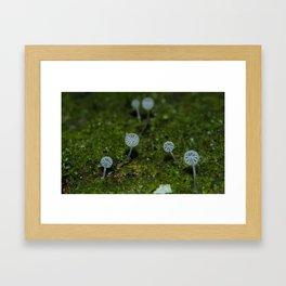 Angel Fungi Framed Art Print