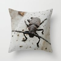beetle Throw Pillows featuring Beetle by Bor Cvetko