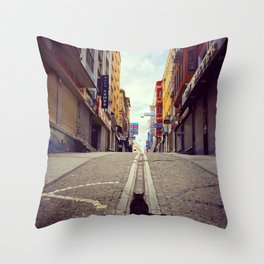 The Cat and Istanbul Throw Pillow