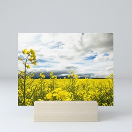 Fields of yellow - Floral Photography #Society6 Mini Art Print