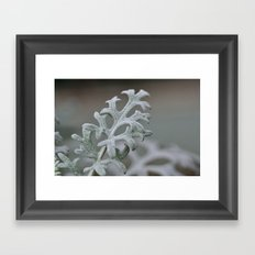 Silver Brocade Framed Art Print