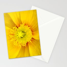 Iceland Poppy Stationery Cards