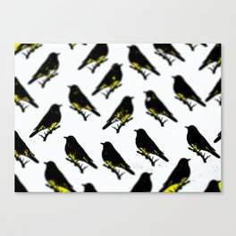 tweety birds Canvas Print