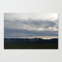 Death Valley In Rare Bloom Spring 2016: At Dusk I Canvas Print