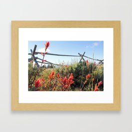 Paintbrush5068 Framed Art Print