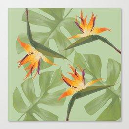 Three Paradise Flowers with Monstera Leaf Canvas Print