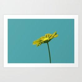 Sky Blue & Yellow Flower Graphic Pop Art Art Print
