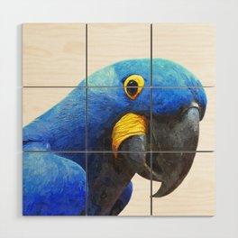 Blue Parrot Portrait Wood Wall Art