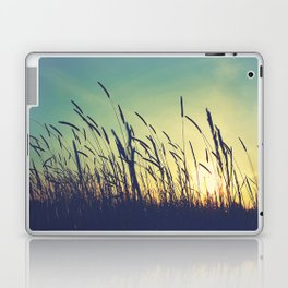 Those Warming Days Laptop & iPad Skin