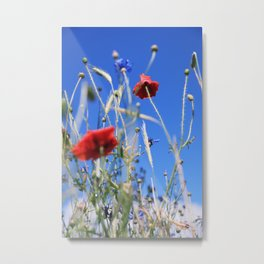 Poppies flower Metal Print