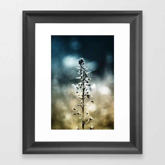 Ametrin Framed Art Print