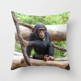 Chimpanzee_20150503_by_JAMFoto Throw Pillow