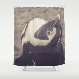 Adorable African Penguin Series 1 of 4 Shower Curtain
