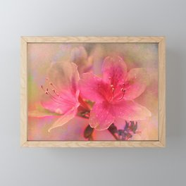 Flowers in a golden glow Framed Mini Art Print
