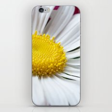 Daisy Flower Close-Up #2 #decor #art #society6 iPhone & iPod Skin