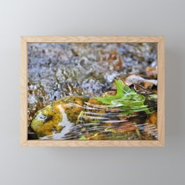 A Leaf On The Water Framed Mini Art Print