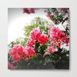 pink FLOWERS Green Leaves Metal Print