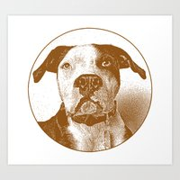 pit bull Art Prints featuring Pit Bull by George Peters