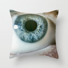 EYE Throw Pillow