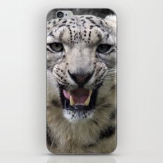 Angry snow leopard iPhone & iPod Skin