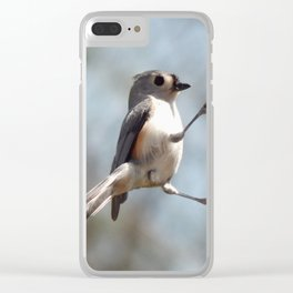 Tufted titmouse lunch Clear iPhone Case