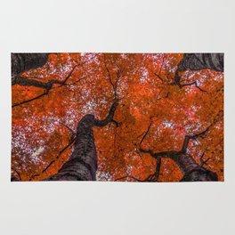 Nishinomiya Japanese Garden - Autumn Trees Rug