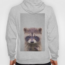 Raccoon - Colorful Hoody