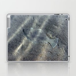 Halibut in the Sand Laptop & iPad Skin