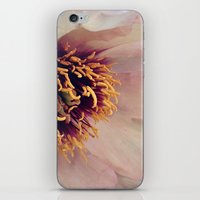 peony iPhone & iPod Skins featuring peony by inourgardentoo