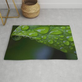 Leaf & Water Droplets Rug
