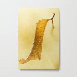 Autumn #6 Metal Print
