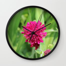 Close Up of Magenta Flower Wall Clock