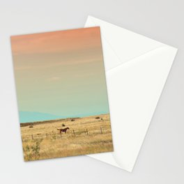 251 | marfa Stationery Cards