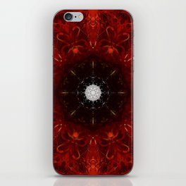 Festive Window Mandala Abstract Design iPhone Skin