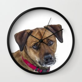 Puppy Dog Eyes Wall Clock