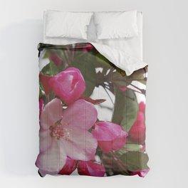Spring blossoms - Strawberry Parfait Crabapple Comforters