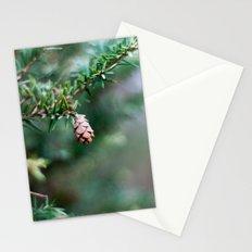 Tiny Pine Cone Stationery Cards