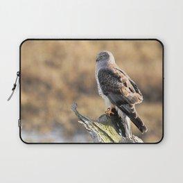 Sunlit Profile of a Northern Harrier Hawk on Driftwood Laptop Sleeve