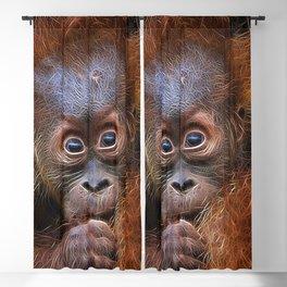 Extraordinary Animals - Orang Baby Blackout Curtain