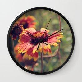 Gaillardia flower Wall Clock