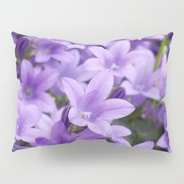 DREAMY - Purple flowers - Bellflower in the sun #1 Pillow Sham