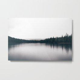 Forest Lake II Metal Print