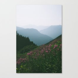 Mountains & Flowers Canvas Print