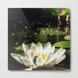 Kansan Pond Metal Print